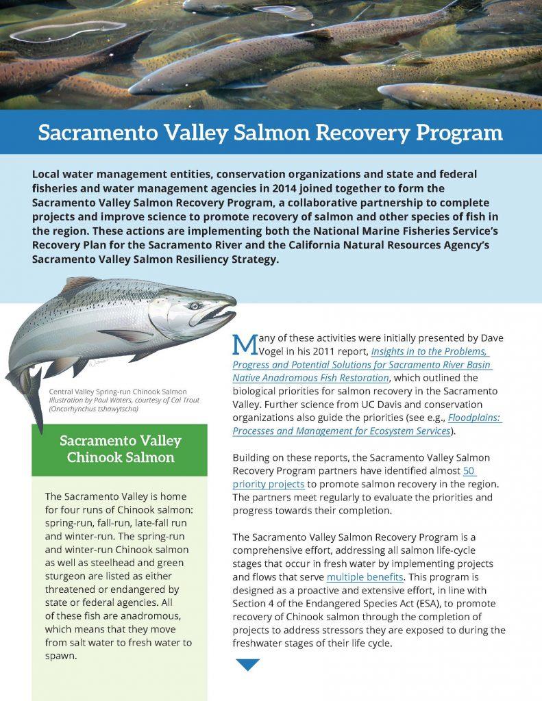 Sacramento Valley Salmon Recovery Program